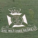 wiltshire-regiment-graphic